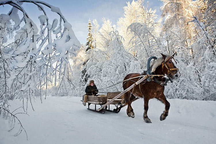 Fairy-tale-photography-frank-herforth-Russia-3