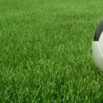 Билеты на футбольный матч Молдова-Бельгия поступили в продажу