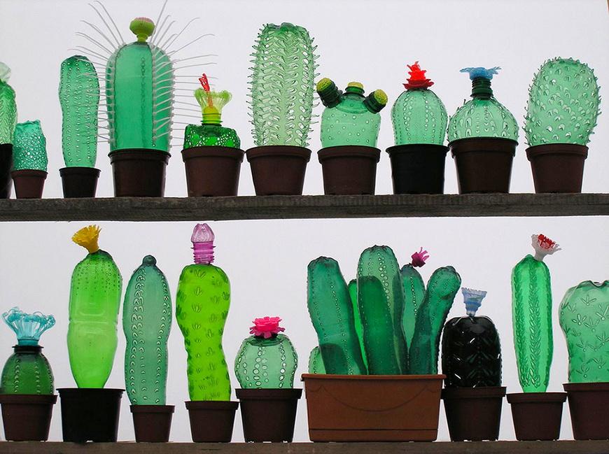 01-plant
