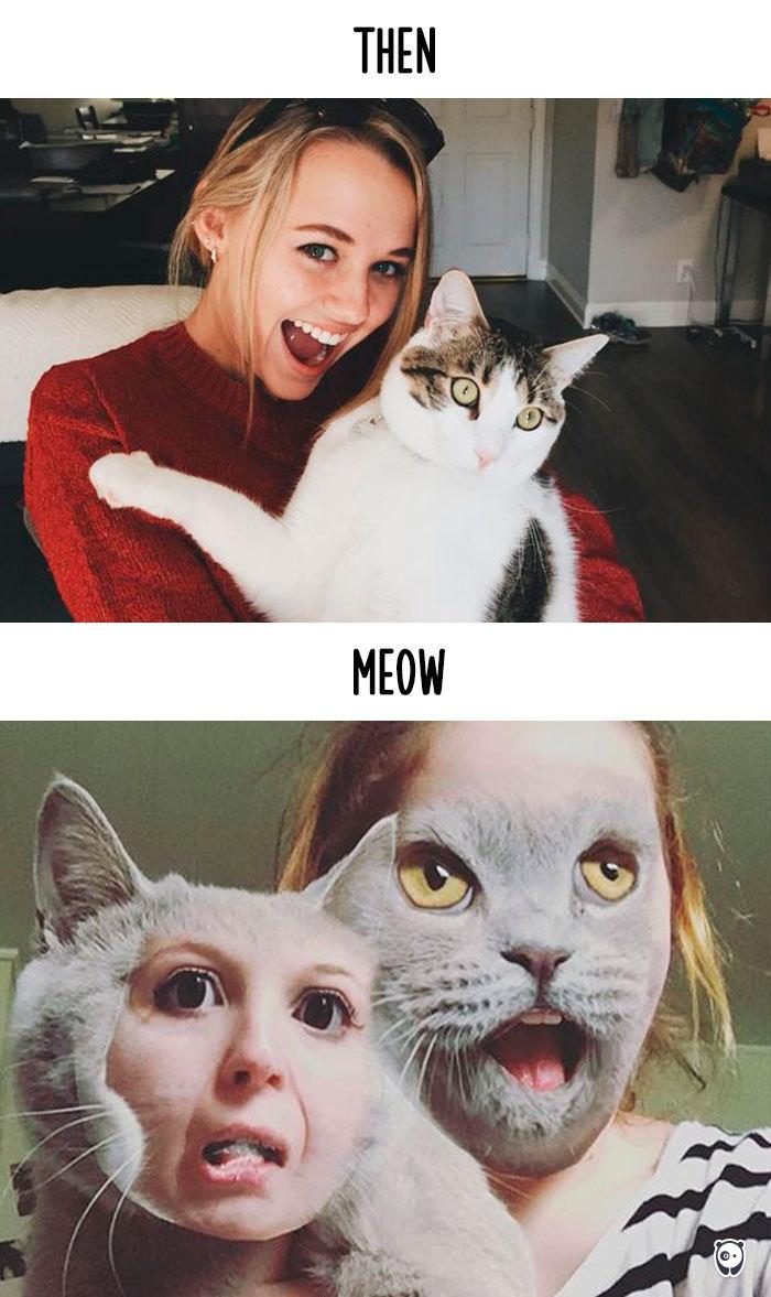 13-cats-change-life