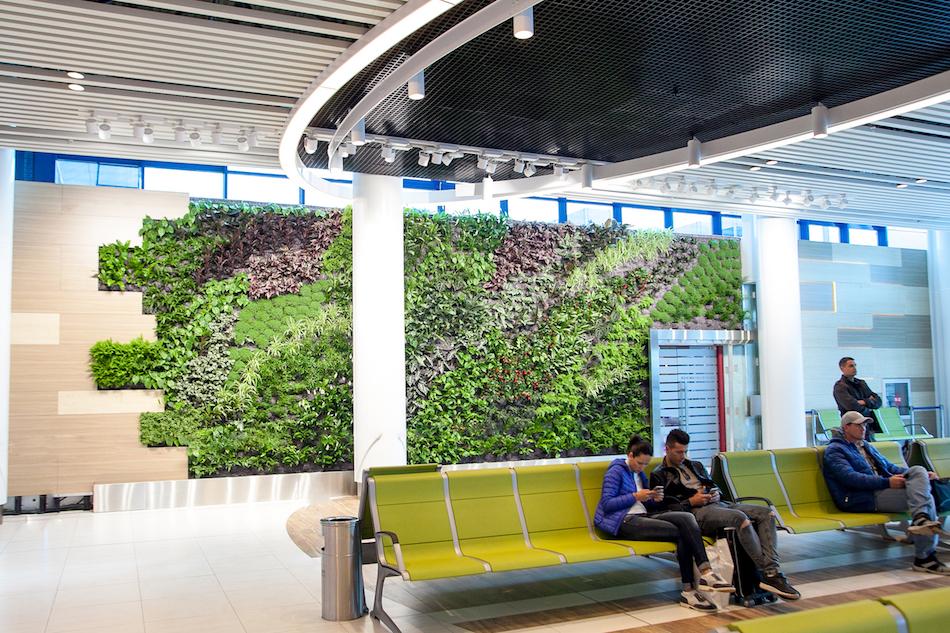 airport-vertical-garden00001