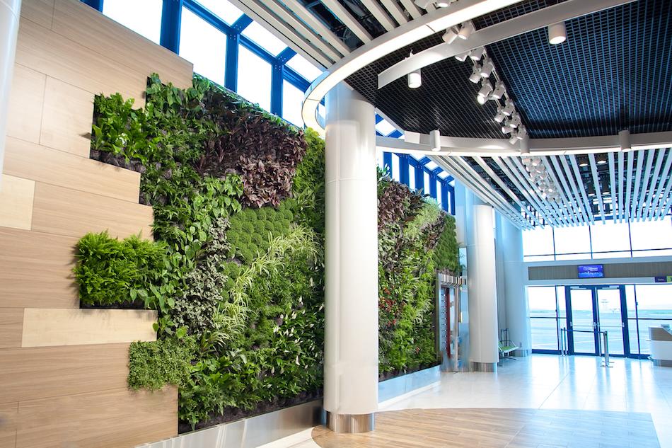 airport-vertical-garden00002