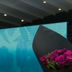Дизайнер Anastasia Che представила коллекцию «Studio»