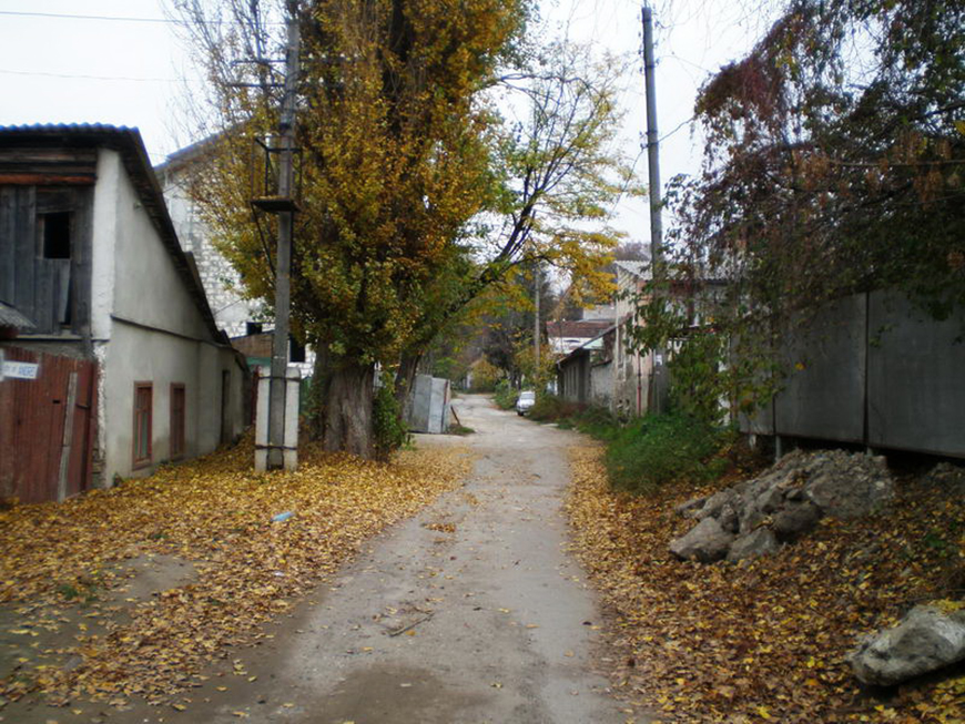 Аndreevskaia_9