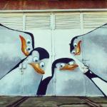 Pinguini în centrul Chișinăului — o nouă pictură urbană pentru Festivalul Mai Dulce