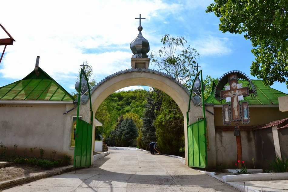 manastirea-Japca-06