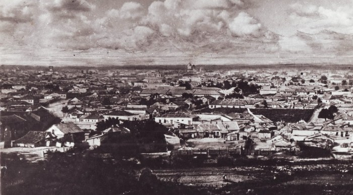 Общий вид на нижний город. Фотография начала XX века. Источник фото: oldchisinau.com.