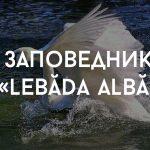 Маршрут на выходные: Леовский район