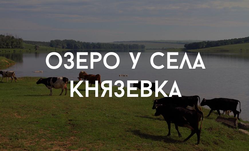 Leova_3