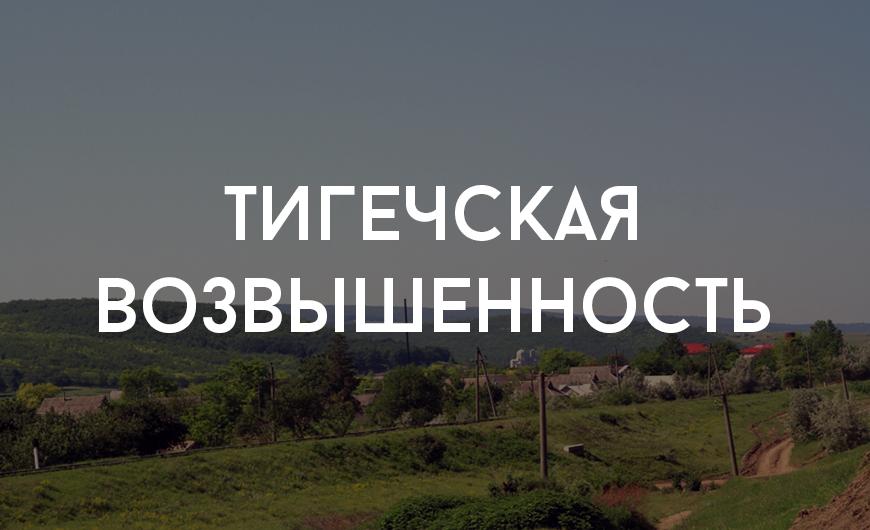 Leova_4