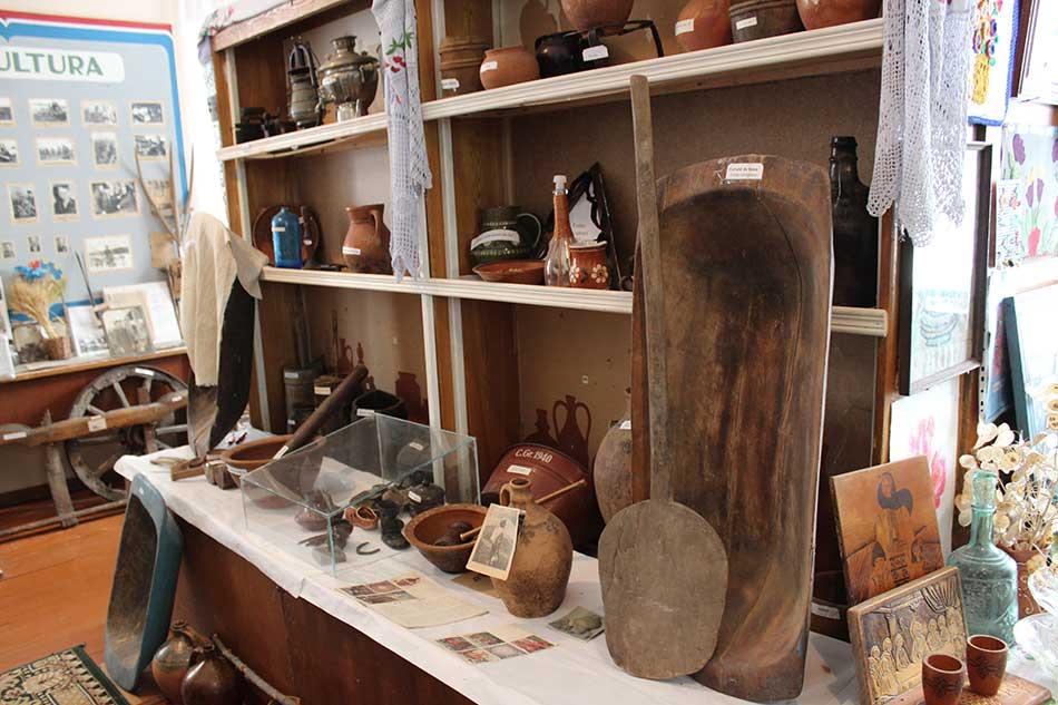 Muzeu Cosauti