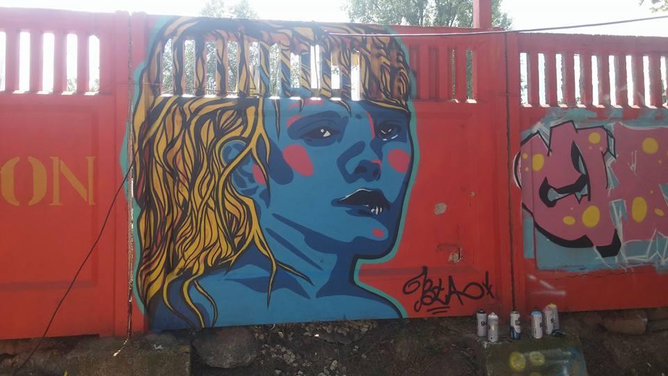 arta urbana adrian plesca (1)