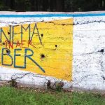 În premieră, 4 filme vor fi proiectate sub cerul liber la Cinematograful de vară din Buiucani