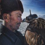 Объявлены победители iPhone Photography Awards-2016