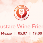 Degustare Wine Friendly la Mezzo