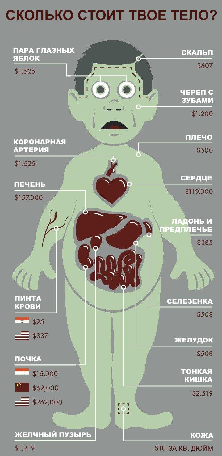 human_body_price_01