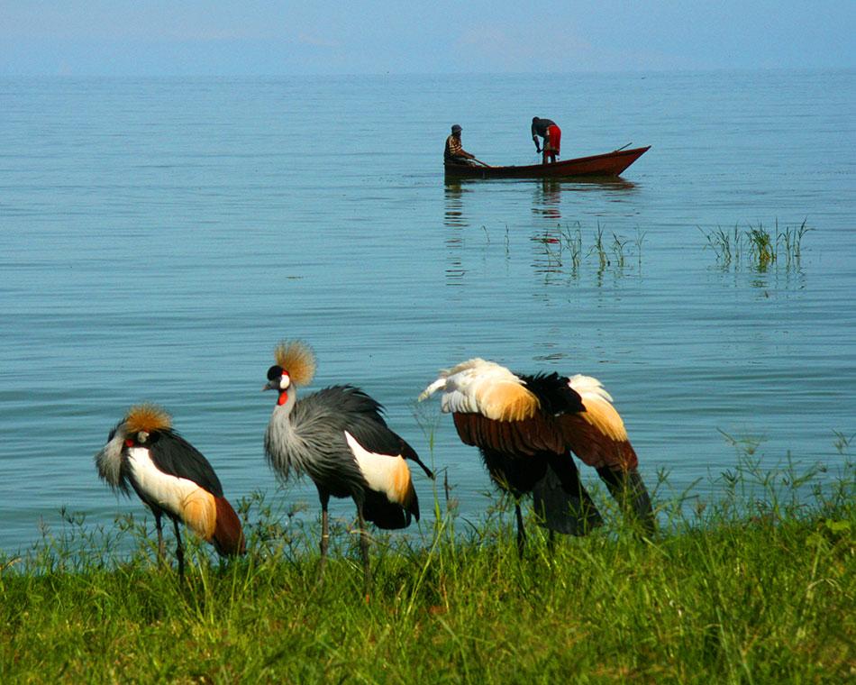 uganda_lake_victoria_1
