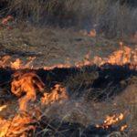 В Молдове из-за жары за сутки произошло более 70 возгораний