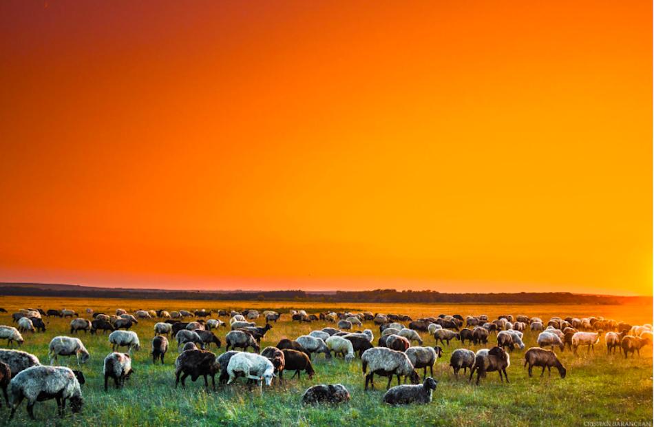 christian-barancean-moldova-sunset-00010