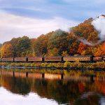 Число путешествующих поездами в Молдове сократилось на треть — статистика