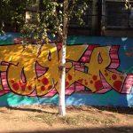 Двор лицея Пушкина украсили граффити