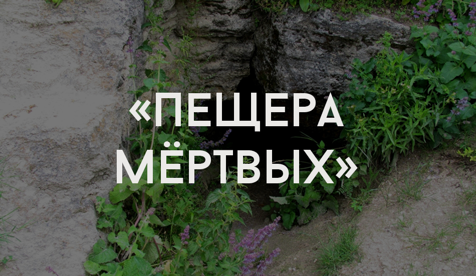 rudi_4