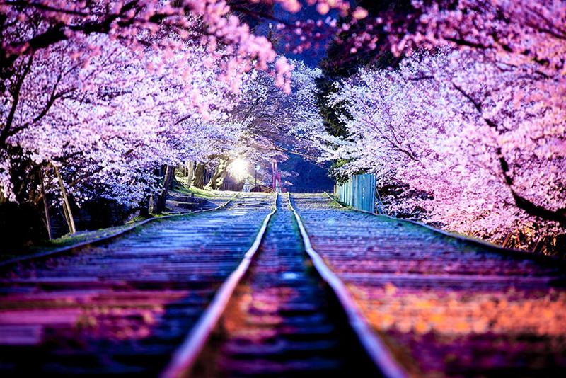 japan-street-photography-64-580890aebdba7__880