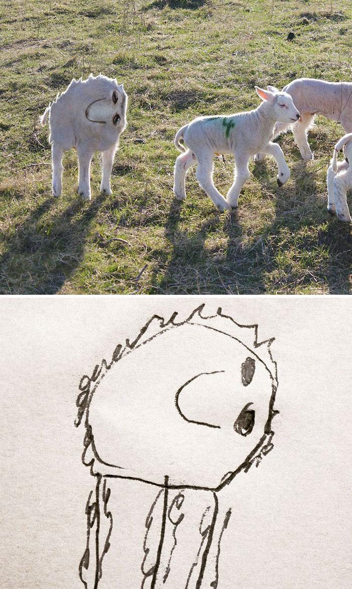 kid-drawings-things-i-have-drawn-dom-22-580dfb88b8255__700