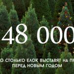 Цифра дня: сколько живых елок выставят на продажу