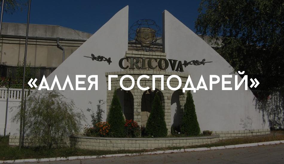 cricova_7