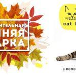 Осенняя ярмарка в МУЗЕЕ КОШЕК