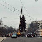 Фото дня: Установка главной новогодней елки столицы