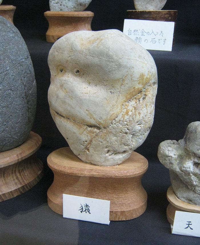 rocks-look-like-faces-museum-chinsekikan-hall-of-curious-rocks-japan-29