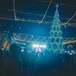 В Бельцах состоялось открытие новогодней елки