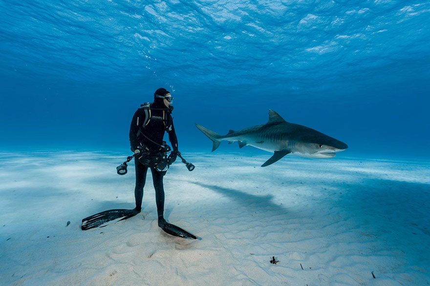 29-best-photos-2016-natgeo-national-geographic-3-5846f6faace9e__880