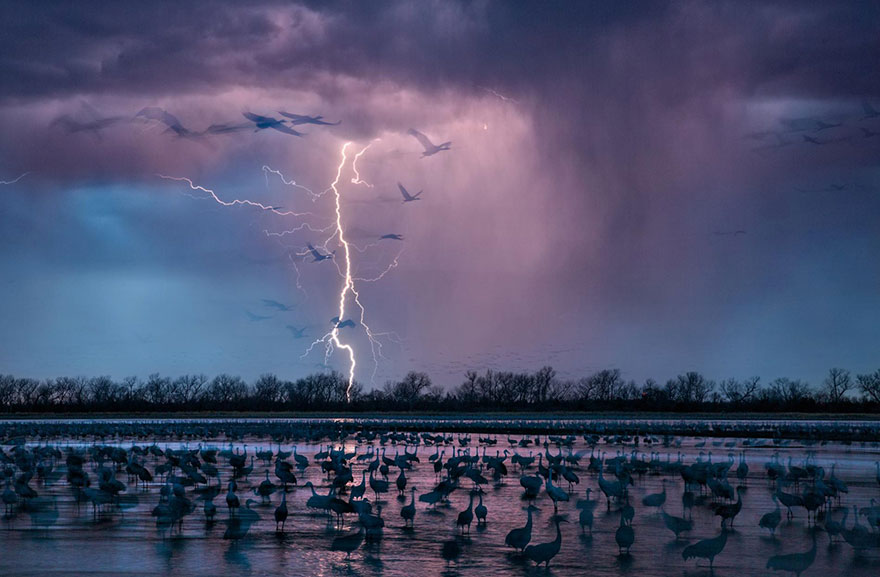 5-best-photos-2016-natgeo-national-geographic-2-5846f6f8cce47__880