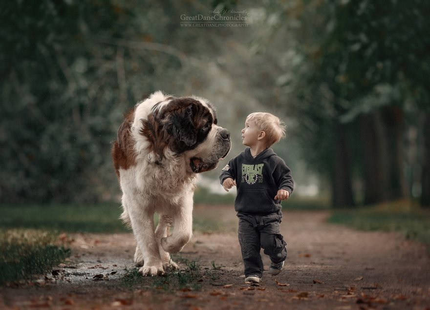 little-kids-big-dogs-photography-andy-seliverstoff-5-584fa907a3cb6__880