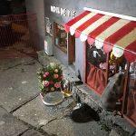 В Швеции появились миниатюрные магазины для мышей