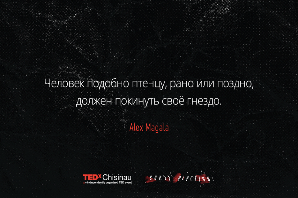 tedx-superposition-2016-citate-1