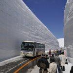 Коротко и ясно: куда девать снег