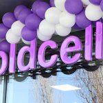 Te așteptăm în cel mai mare magazin Moldcell din Căușeni!