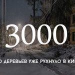Цифра дня: предварительный ущерб от стихии