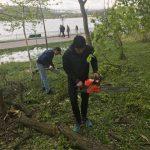 Voluntarii au curățat parcul Valea Morilor de crengi și copaci căzuți