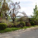 Orășenii au făcut curațenia în Grădina Botanică