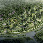 В Китае появится первый в мире «лесной город»