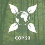 Журналисты из Молдовы могут участвовать в конференции ООН по вопросам изменения климата (COP23) в Германии