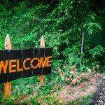 Пять причин пойти на «In Da Wood Fest» в этот уик-энд