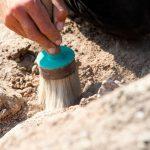 Под Хынчештами раскопали следы поселений железного века