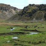 Маршрут на выходные: путешествие вдоль реки Драгиште