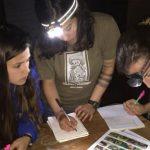 Студенты биологи и экологи из Молдовы могут претендовать на стипендию на обучение на курсах FPI